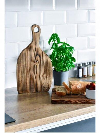 But first wood Medinė lentelė Čilė 3