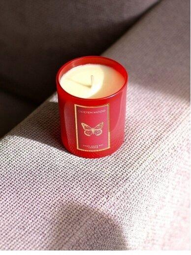 ODDEN MOOD žvakė DRUGYS 2